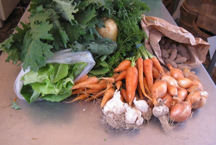 Veggies from last summer